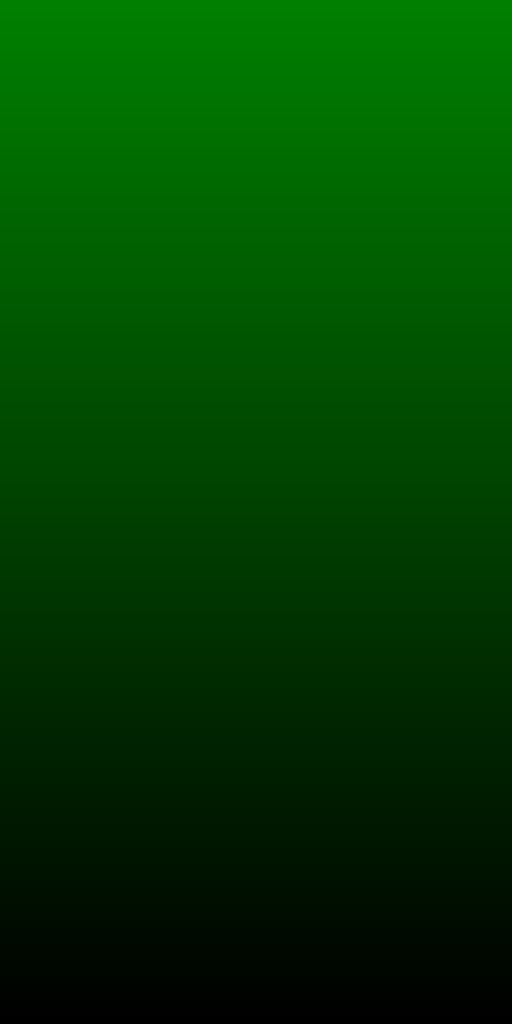 briar-android/src/androidTestOfficial/assets/green-1000x2000.png